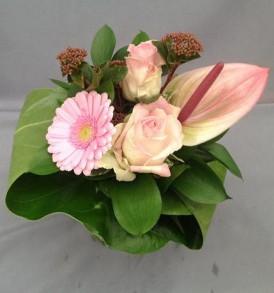 bladboeket-laag-roze-2